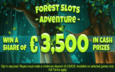 Forest Slots Adventure